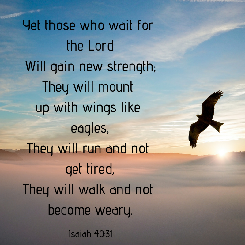 Yet those who wait for the Lord Will gain new strength; They will mount up with wings like eagles, They will run and not get tired, They will walk and not become weary.